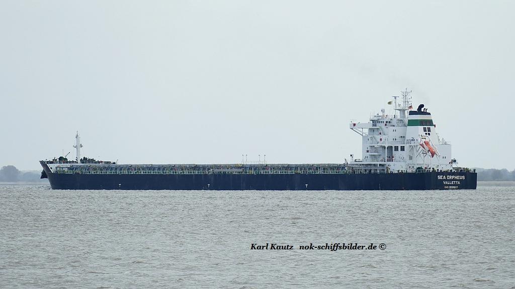 Sea Orpheus (KK-050519-3).jpg