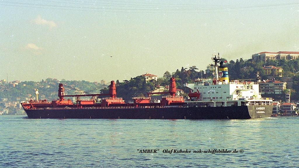 Amber (OK-2005-0).jpg
