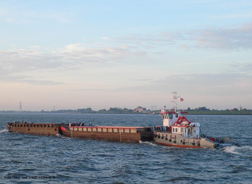 MOIN mit Bargen