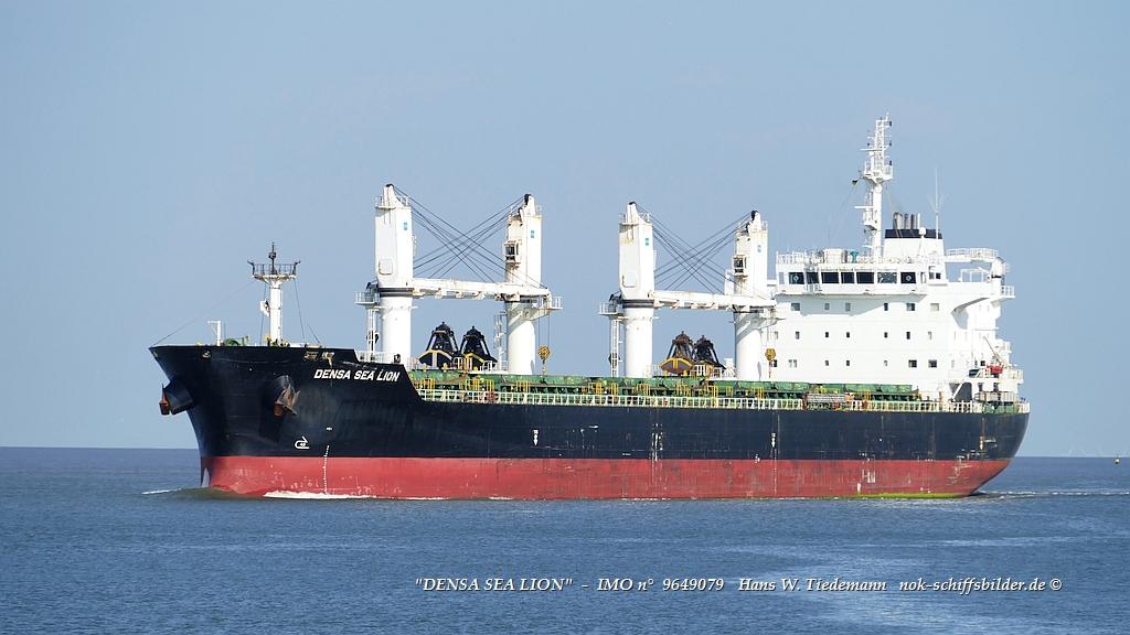 Densa Sea Lion, MLT...