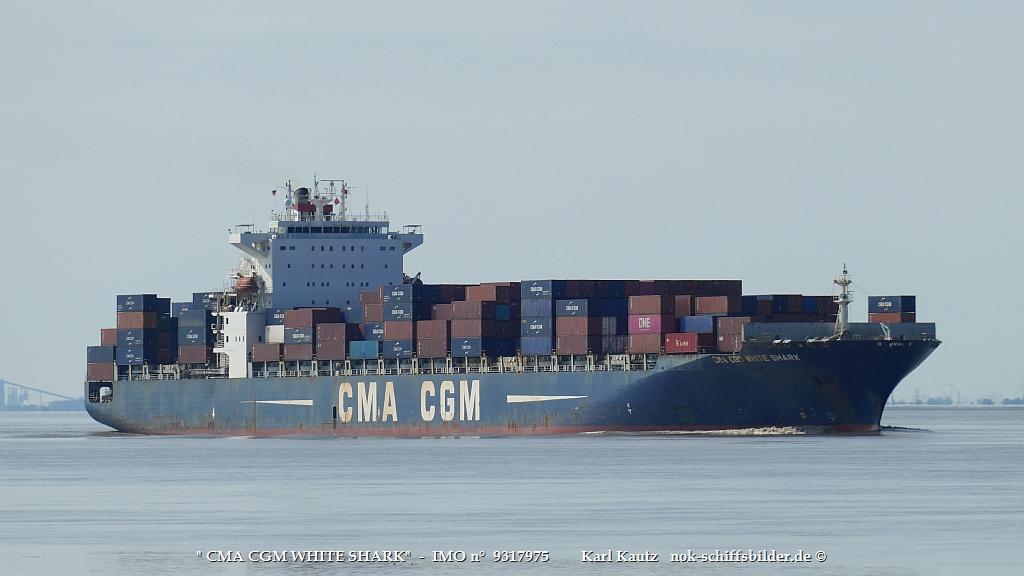 CMA CGM WHITE SHARK