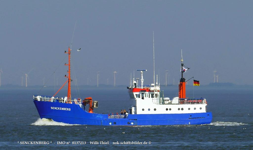 SENCKENBERG  -  IMO n°  8137213  Elbe Cuxhaven.jpg