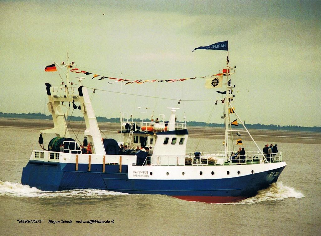 HARENGUS BX 782