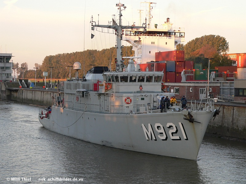 M 921 LOBELIA