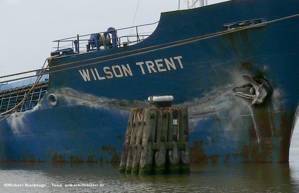 WILSON TRENT Schäden