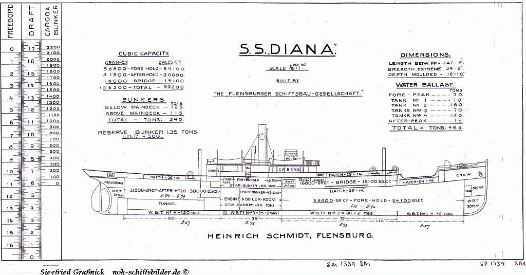 """D. DIANA"""" (2)"""