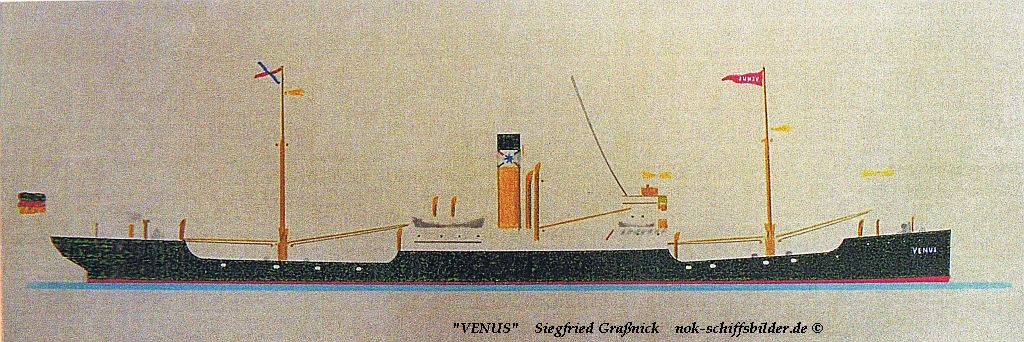 D.VENUS
