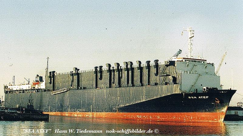 Sea Atef, MLT - 23.11.02 Bhv1