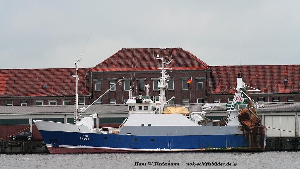 IRIS BX 775