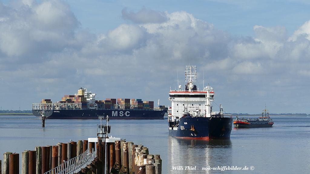 Blick auf die Elbe ...