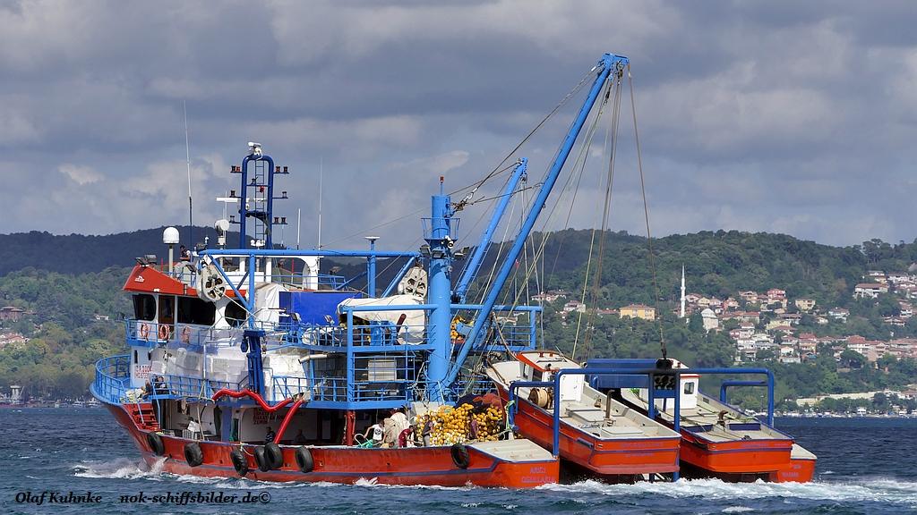 ARICI OGULLARI II